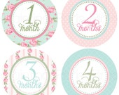 Shabby Chic Roses Belly Babe {TM} Monthly Baby Stickers - 1st Year - Bonus Just Born Set included