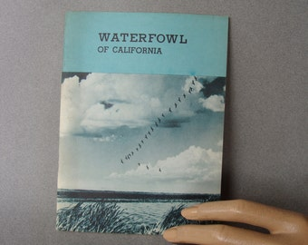 Waterfowl of California 1950s Booklet 50s California Department of Fish and Game Wildlife Animals