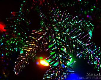 Sale! Rainbow On Black Abstract Photo Art, Tree photography, Ice reflections, colorful wall art, bold home decor, dark photography
