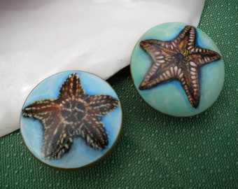 Handpainted Wooden Knobs, Starfish, Seashells, Mermaids, Beth Baker Artist