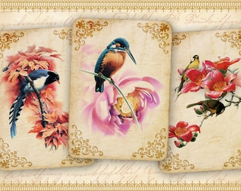 Vintage birds Greeting cards on Printable Digital Collage Sheet best for paper craft, jewelry holders, scrapbooking - CUTEST BIRD CARDS