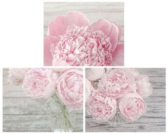 Set of 3 Pink Peony Photographs, Flower Print Set, Your Choice of Size, Fine Art Photography, Pastel Pink, Gray, Feminine, Nursery Art