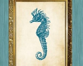 Seahorse Art Print Bathroom Print 8 x 10 Ocean Art Nautical Art Print Natural History Print