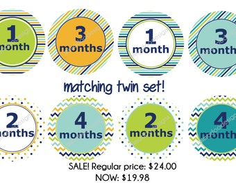 Twin Monthly Stickers - Matching Modern Design for Twins