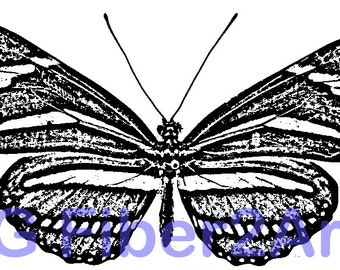 Thermofax Screen Butterfly #2