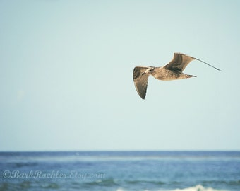 Freedom - Ocean Photography - Fine Art Print - Nature - 8x10 Print - Water - Blue - Bathroom Art