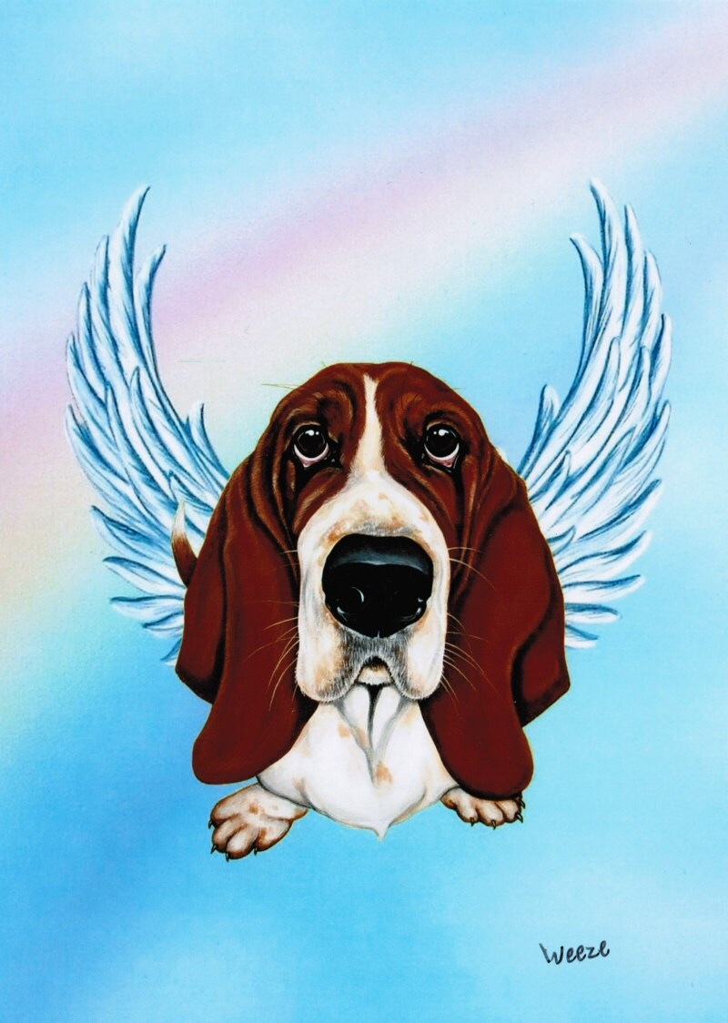 Basset Hound Basset Hound Angel Basset Hound Art By Artbyweeze