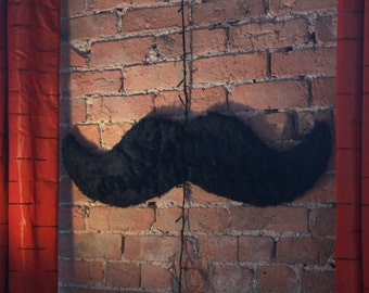 Moustache Furry Wall Decoration