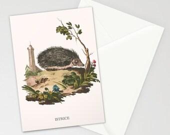 Handmade greetings card, Artist card, Greetings Card, birthday card, friendship card, handmade card, hedgehog, wildlife card