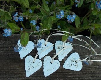 6 Plantable paper gift tags with forget me not seeds, garden gift tag, paper flower,valentines day plantable paper heart seed paper heart