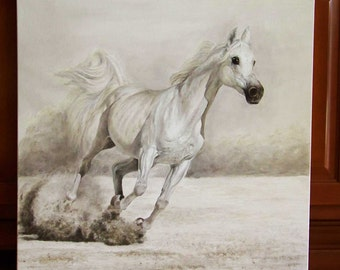 Original Painting, White Horse ARAB, Realistic Oil Painting on Canvas 27,5 x 27,5 in.