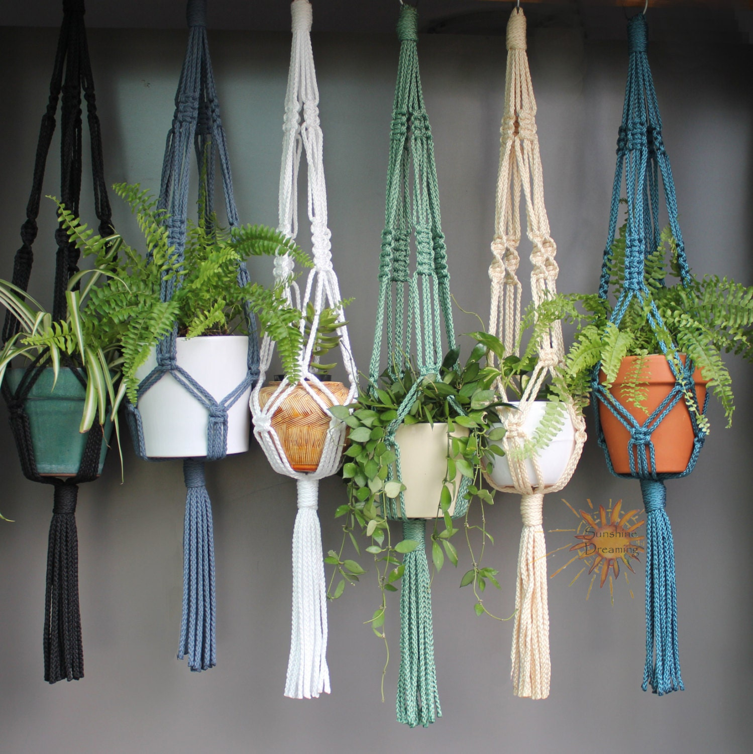Macram Plant Hangers In Assorted Neutral Colours