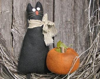 Black Cat and a Pumpkin Set