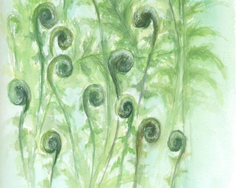 Fiddlehead Ferns Original Watercolor Painting