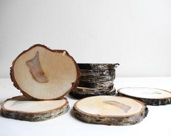 Wood Slices, Tree Slices, Birch, Birch Wood, Coasters, DIY, Woodworking, Wedding Decor, Wood Rounds, Set of 10, B77