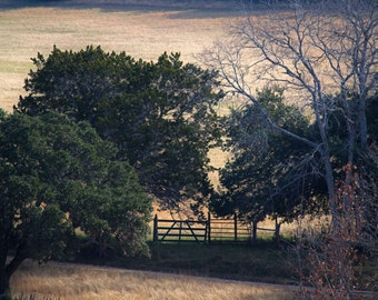 The Gate.Fine Art Photography.Texas Landscape.Country Fields.Rural Route.Western Fine Art.Hill Country.Rustic Home Decor.Ranch House Chic.