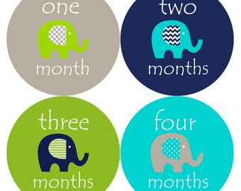 Monthly Baby Milestone Stickers Baby Boy Baby Shower Gift One-Piece Baby Stickers Monthly Baby Stickers Baby Month Stickers 151