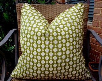 Both Sides ONE Schumacher Betwixt Grass Ivory and Pillow Covers with Self Cording