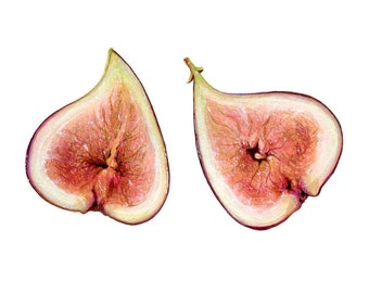 Fig Illustration // Food Art // Archival Print, Mediterranean