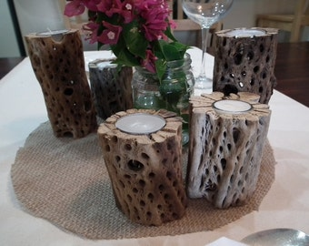 Cholla cactus candle holders