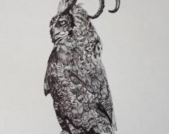 Great Horned Owl original 11 x 14 pen drawing