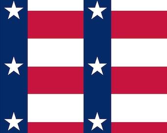 Texas flag print craft vinyl sheet - HTV or Adhesive Vinyl -    HTV142