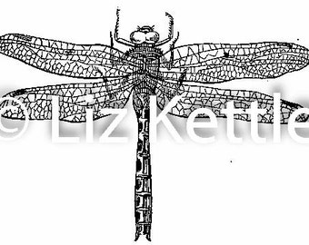 """Dragonfly Thermofax Screen for Instant Screen Printing - """"Dragonfly"""""""