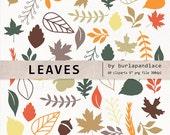 Leaves Digital Clipart Elements, leaves clipart pack, autumn leaf, brown, orange, green leaf, Fall Autumn Leaves