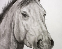Black horse head drawing - photo#28