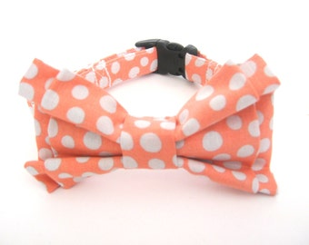 Bow Tie Collar Small Medium Large Peach Polka Dot Collar