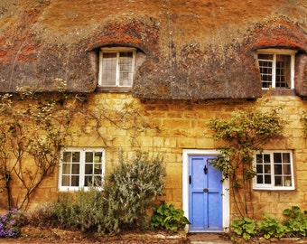 Thatched Roof House with Blue Door
