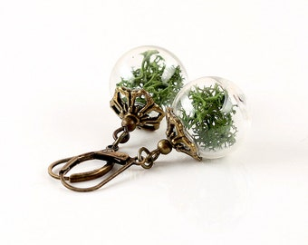 Genuine moss earrings E056