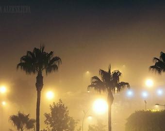 Palm trees in fog - Palm Tree Photo, Fog Photography, Art Photography, Nightsky Photography, Night Photography - Print, wall decor, tropical