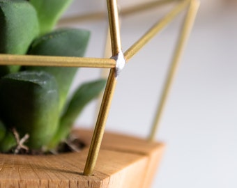 Modern Faceted Geometric - for Air Plant, Succulent and Cacti - Wood Brass Polygon Gem