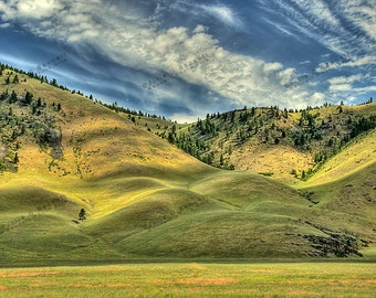 The Rolling Hills of Western Montana