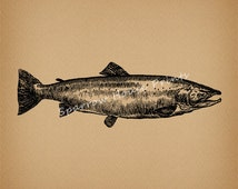 Vintage Salmon Art Wall Art Fish Print Antique Artwork with Antique Aged Paper Style Background No.4056 B1 8x8 8x10 11x14