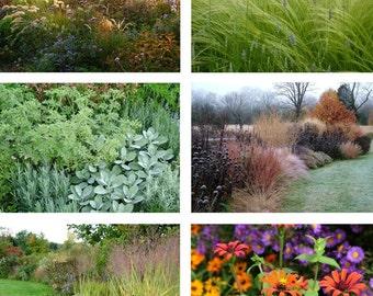Garden Photo Notecards Set of 6 Horizontal Images