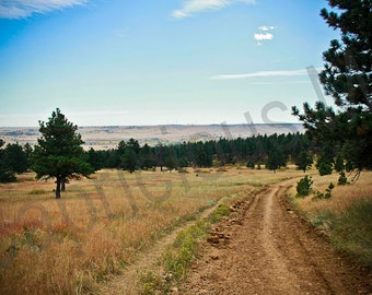The Open Trail: Photograph