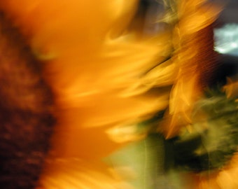 Wam: Abstract Floral, Ethereal, Wall Decor, Fine Art Photograph