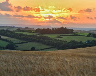 Sunset photography, over Bideford bay and Lundy Island, Orange sunset, fields of wheat, landscape photography, agricultural photography