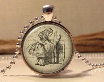 Alice in wonderland Jewelry. Alice Necklace .Alice in wonder land art pendant jewelry(alice #15)