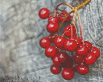 "Cross stitch pattern PDF ""Kalina - European Cranberry"""