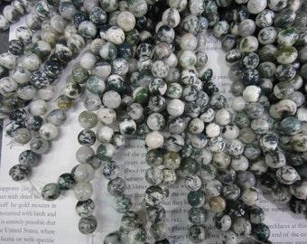 10mm Tree agate round beads,  full strand long
