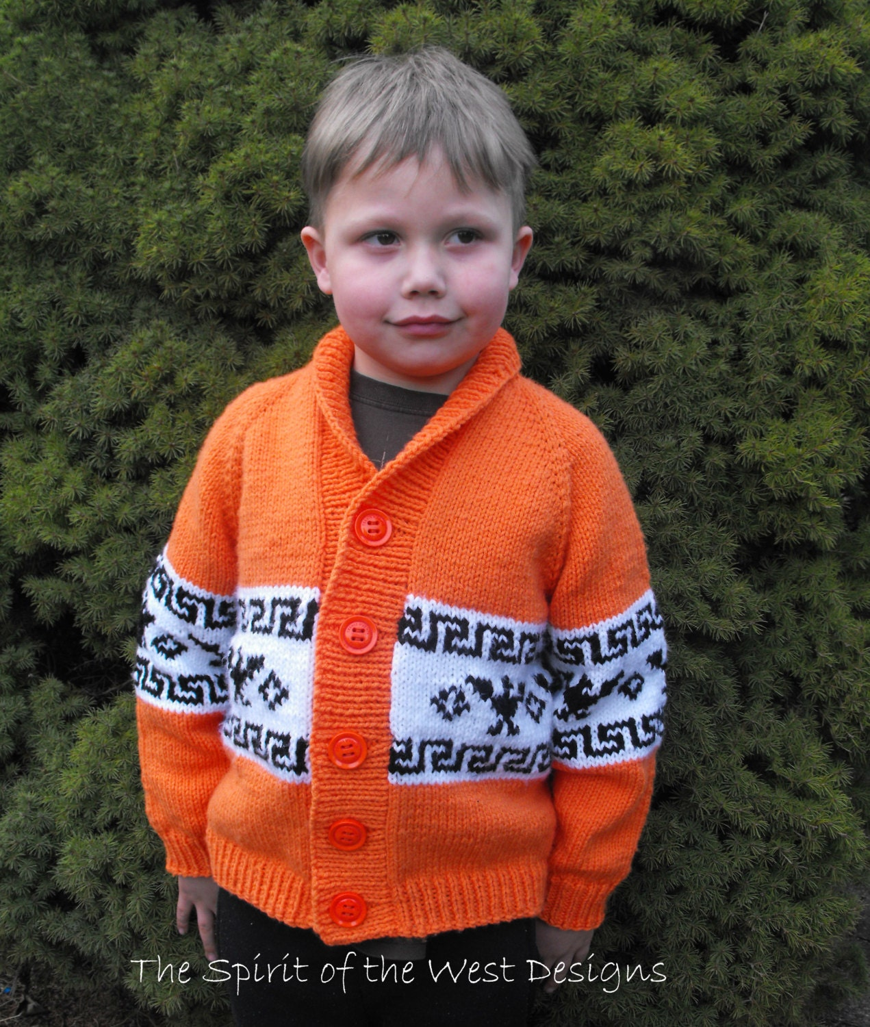 T bird cardigan knitting pattern cowichan style knit sweater this is a digital file bankloansurffo Choice Image