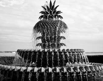 Pineapple Fountain in Black & White, Charleston fine art prints