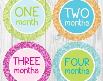 Pastel Baby Monthly Stickers, Girl Monthly Stickers, First Year Stickers Girl, Milestone Stickers, Baby Girl Month Stickers, Baby Shower