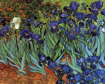 Irises by Vincent Van Gogh, Giclee Canvas Print
