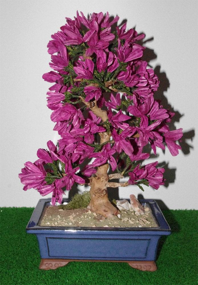 Azalea in vaso bonsai con foglie in di katiaepaolocreations - Azalea foglie ...