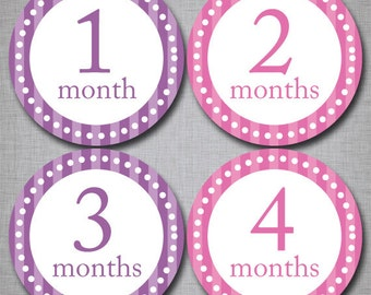 Baby Monthly Stickers Milestone Monthly Stickers Girl Stickers Month by Month [G011]