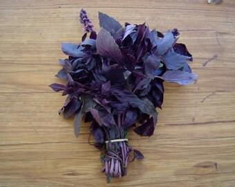 Organic Basil Red  seeds 3.00gr (1800 - 24000 Seeds )